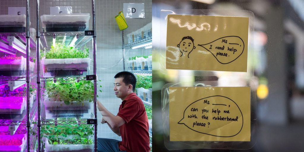 Left: Daniel tends to the herbsgrowing on the racks; Right: Post-it notes to help trainees remember how to ask for help